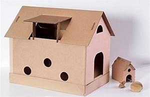 Karton Pappe Kaufen : indoor katzenhaus katzenhaus pappe tipps empfehlung ~ Markanthonyermac.com Haus und Dekorationen