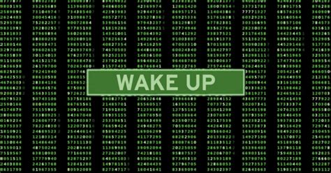 Stop Bullshitting Yourself If You Want To Wake Up (from