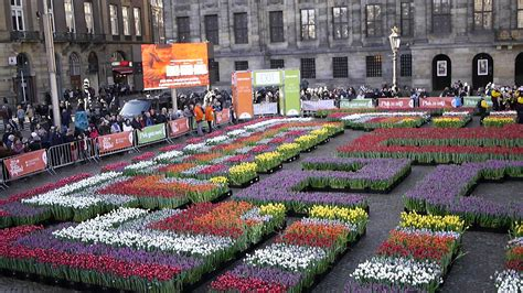 Amsterdam Museum Free Days tulips season in holland history and events city life