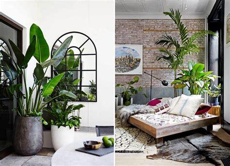 Twelve Stylish Indoor Plant Ideas For City Living