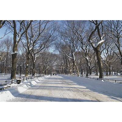 Winter Mall Central Park Photograph by Andrew Kazmierski