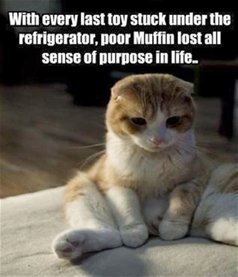 Sad Cat Quotes Quotesgram. Motivational Quotes Thursday. Girl Character Quotes. Best Friend Quotes Missing Them. Quotes To Live By For Tattoos. Cute Quotes To Send To Your Girlfriend. Mom Sister Quotes. Movie Quotes Untouchables. Famous Quotes Marriage
