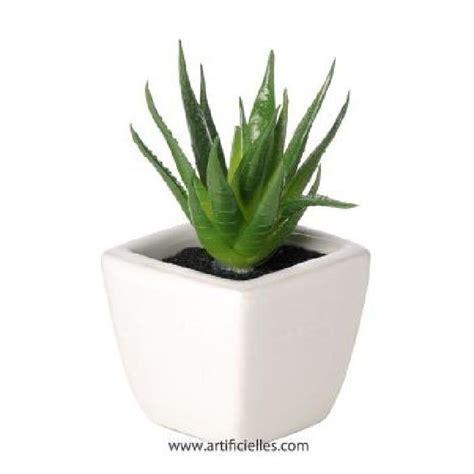 plante grasse artificielle succulente cactee en achat