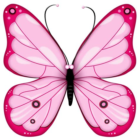 Butterfly Clipart Free Clipart Images 2 Clipartingcom
