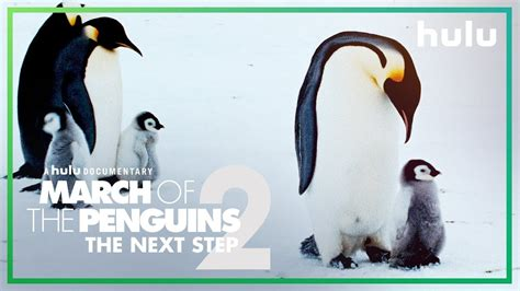 March Of The Penguins 2 (official Trailer) • Only On Hulu Youtube
