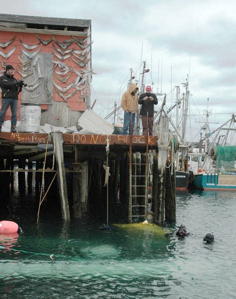 Wicked Tuna Boat Sinks by Wicked Tuna Boat Sinks Recovered Local News