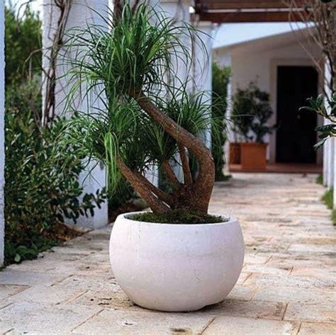 pots 224 fleurs et jardini 232 res design 67 id 233 es de d 233 co ext 233 rieure