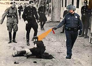 [Image - 205799] | Casually Pepper Spray Everything Cop ...