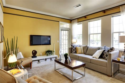 best living room colors home designs