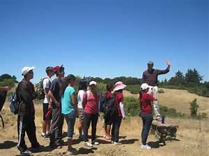High School Internships | Stanford School of Earth Sciences