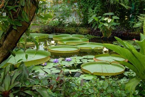 Botanischer Garten Der Tu Dresden 60plusminus