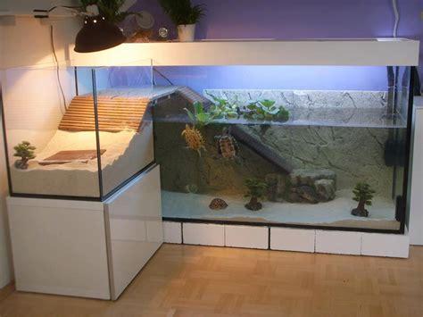 recherche aquaterrarium