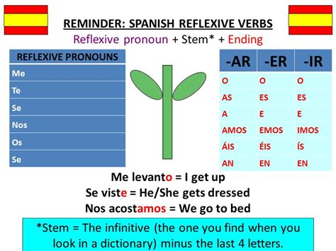 Spanish Verbs Reflexive Verbs Who Is Doing The Verb  Ppt Video Online Download