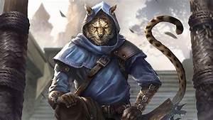 Exploring Elder Scrolls: The Khajiit of Elsweyr - YouTube