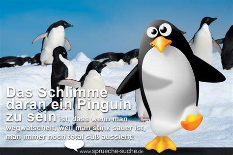 Wenn Pinguine Sauer Sind