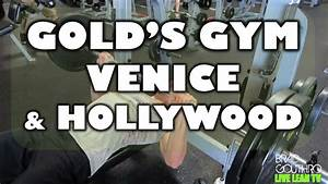 Gold's Gym Venice & Hollywood - Lifestyle Part 2 - Live ...