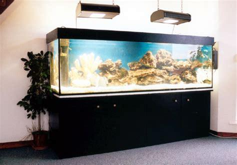 installation d 233 coration aquarium eau douce pas cher