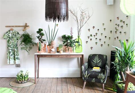 Ideas Of How To Display Indoor Plants Harmoniously