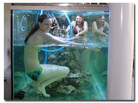 l aquarium geant du groupe solutys abri sous roche