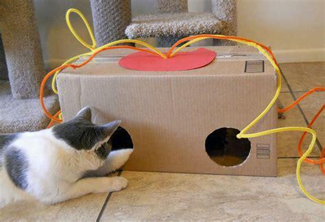 amuser le chat jeux fait soit meme