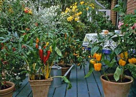 How To Make An Urban Vegetable Garden  City Vegetable Garden