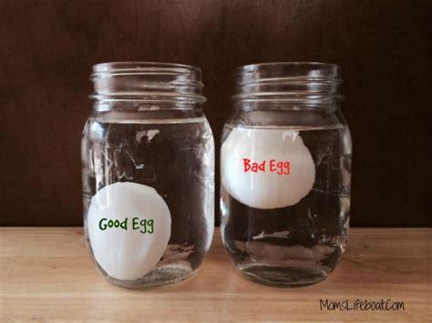 egg or bad sink or float images
