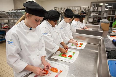 Top 5 Best Culinary Schools In Arkansas 2017. Nursing Schools In America Shore Bank Chicago. Reykjavik Airport Car Rental. Flower Delivery Nairobi Checking Account Rate. Professional Website Designs. Commercial Gutter Cleaning Fax Through Skype. Addictive Personality Treatment. Security Source Albuquerque Tbs Dish Network. Online Trading With No Minimum Deposit