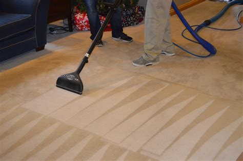 Tips For Cleaning After Your Uninvited Guests Leave Snow White Carpet Cleaning Wichita Ks Installation Erie Pa Ij Carpets Bend Oregon Eureka Oceanside Cleaners Remove Tea Stains From How To Clorox Nilfisk Machine