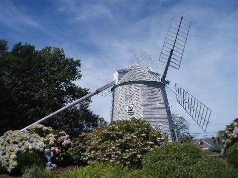 At One Of The Windmill  Picture Of Cape Cod Scenic