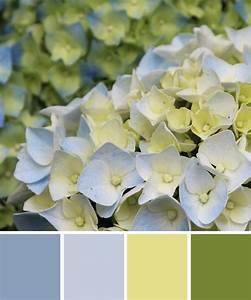 Blau Und Grün : farbinspirationen hortensie in blau und gr n ~ Markanthonyermac.com Haus und Dekorationen