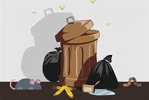 Maden Im Müll : 19 tipps gegen stinkende m lleimer ~ Markanthonyermac.com Haus und Dekorationen