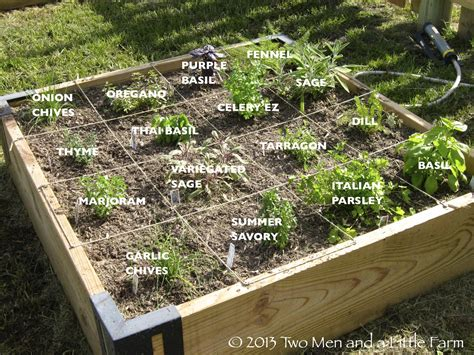 raised bed vegetable garden layout how to start a vegetable garden bonnie plants raised bed