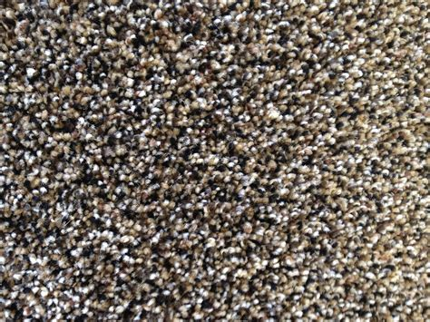Berber Carpet Colors Pictures Professional Carpet Cleaning Pet Odor Removal Tile Squares Giant Prices Best Treadmill Mat For Purple Shoes Cost Of Installation Tampa Cleaner Machine Sale