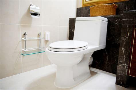 4 signs you need a new toilet plumbing ottawa faucet fix
