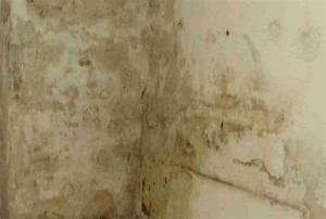 Wand Feucht Was Tun : feuchter keller was tun feuchter keller das k nnen sie dagegen tun ein feuchter keller das k ~ Markanthonyermac.com Haus und Dekorationen