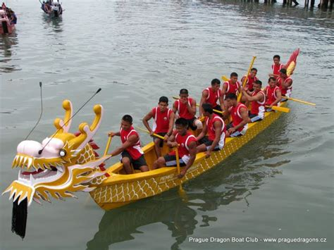 Parts Of A Dragon Boat by Frontiers Of Zoology Oriental Dragon Boats