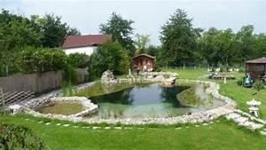 Badeteich Im Garten : erfahrungsberichte selbstbauer gartengestaltung zangl ~ Markanthonyermac.com Haus und Dekorationen