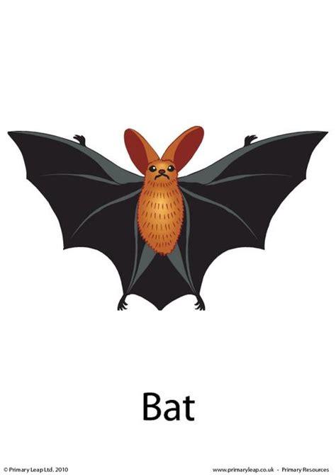 Halloween Flashcard  Bat Primaryleapcouk