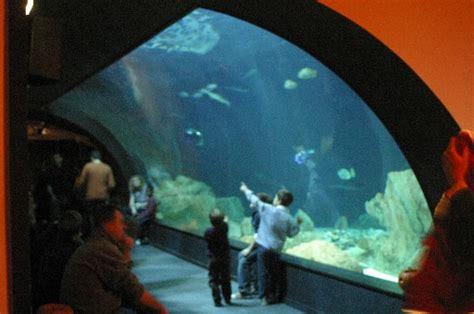 file tunnel aquarium trocadero jpg wikimedia commons