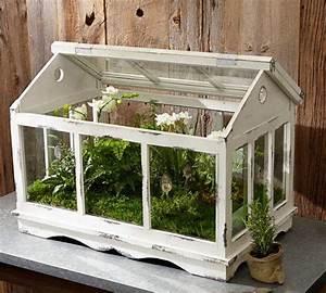 Kleines Glas Gewächshaus : glass teapot terrarium mini gewaechshaus holz weiss shabby chic gardening pinterest ~ Markanthonyermac.com Haus und Dekorationen