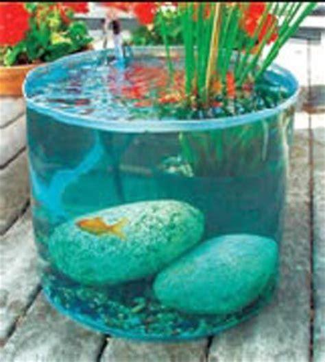 les diff 233 rents types de poissons partie i mon jardin aquatique