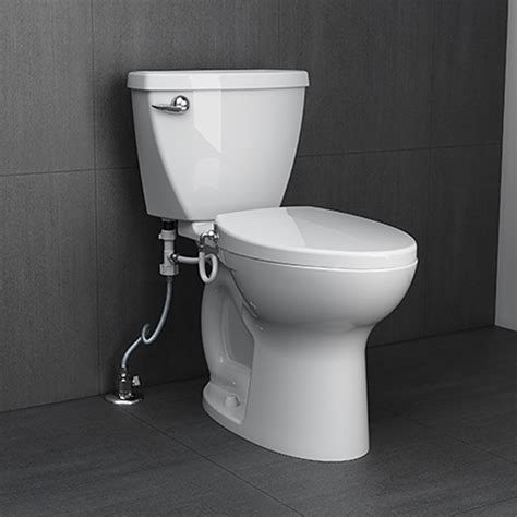 Fresh  Home Depot Toilets With Bidet  Insured By Ross