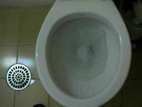 counter clockwise toilet flush in south america