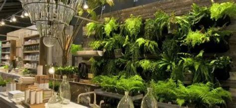When Plants Become Interior Decor