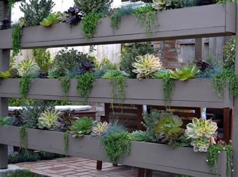 formidable fabriquer un mur vegetal exterieur 5 quand le brise vue naturel adopte laspect dun