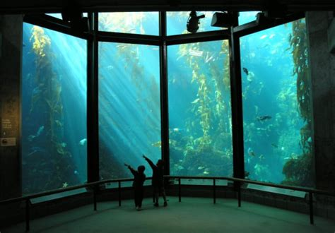 a rent increase after 35 years monterey bay aquarium