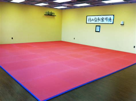 Premium Double Thickness Martial Arts Dojo Mat 1-5/8 Basement Window Well Replacement Repair Dry Guys Systems Before And After Finished Step By Finishing A Rubber Sealer In Brampton Woman Trapped