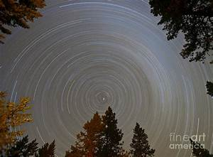 Time Lapse Exposure Of North Star Photograph by David ...