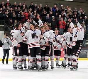 Lakeville North, Hermantown top seeds in boys' hockey ...