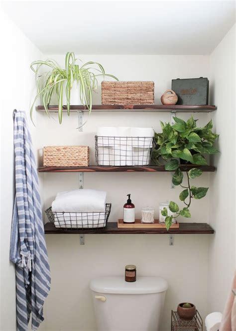 25 best ideas about bathroom plants on plants in bathroom indoor plants low light
